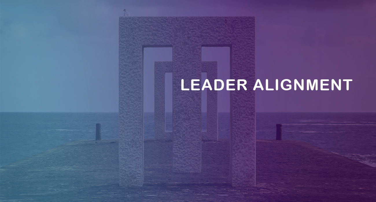 Leader Alignment half day virtual workshop